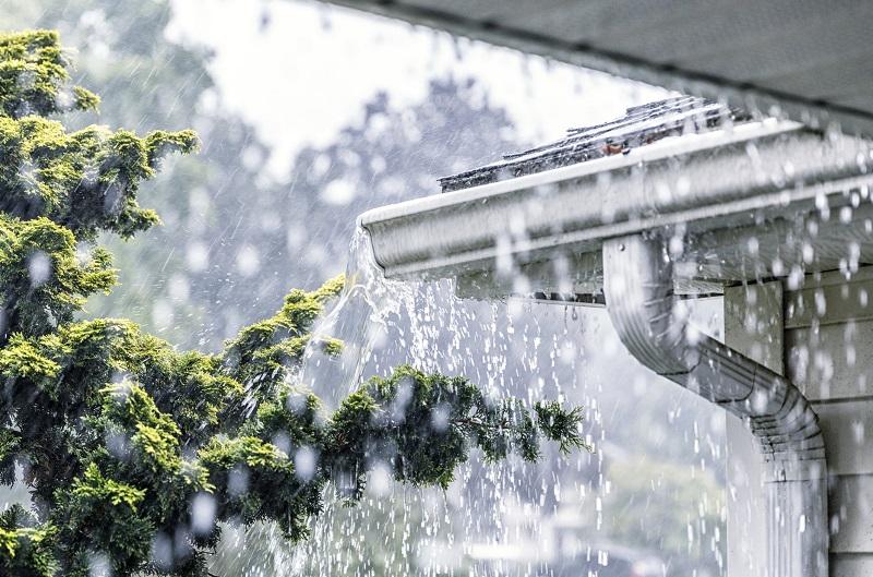 deszczówka